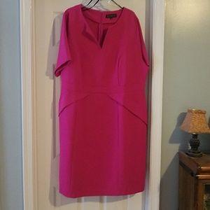 Eloquii 20w magenta dress